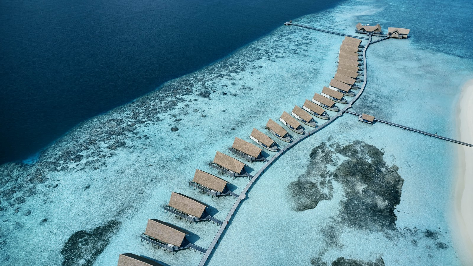 Мальдивы, отель COMO Cocoa Island, домашний риф