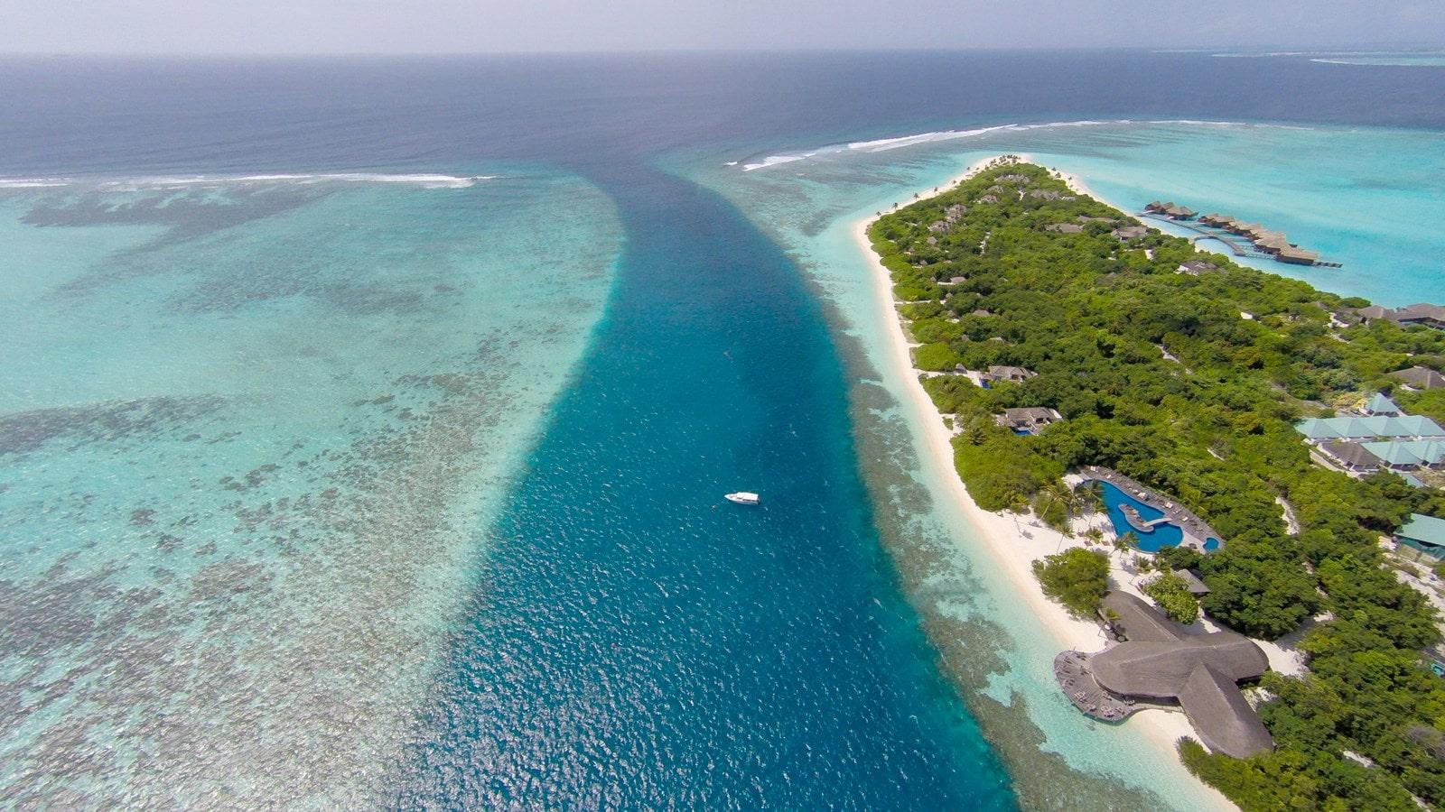 Мальдивы, отель Hideaway Beach Resort & Spa, домашний риф