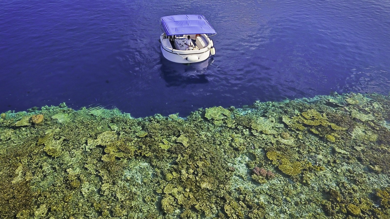 Мальдивы, отель Amilla Fushi Maldives, домашний риф