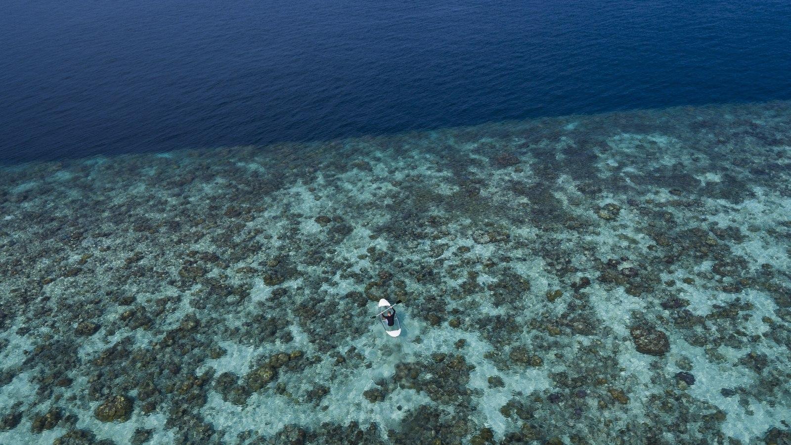 Мальдивы, отель Anantara Kihavah Maldives Villas, домашний риф