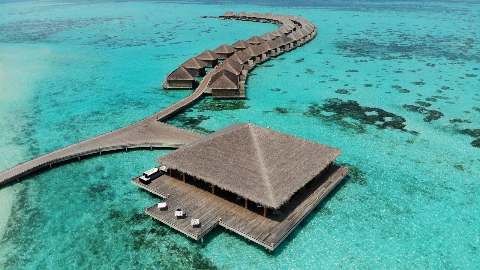 Мальдивы, отель Cocoon Maldives
