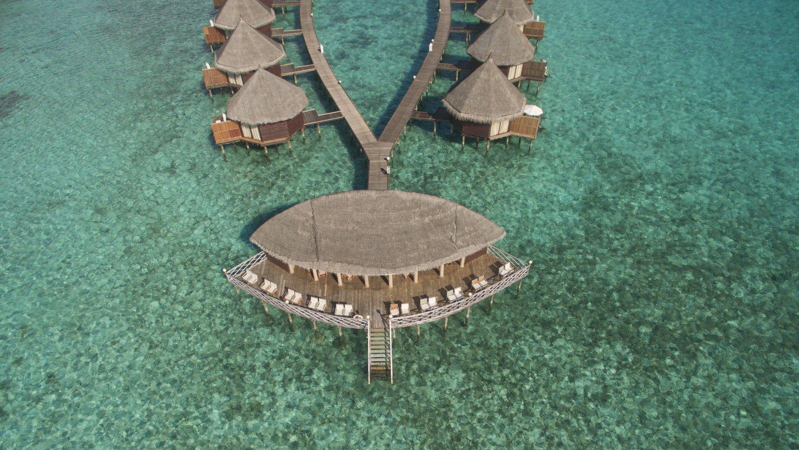 Мальдивы, отель Angaga Island Resort & Spa, бар