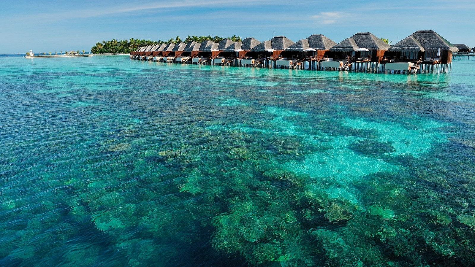 Мальдивы, отель Ayada Maldives, домашний риф