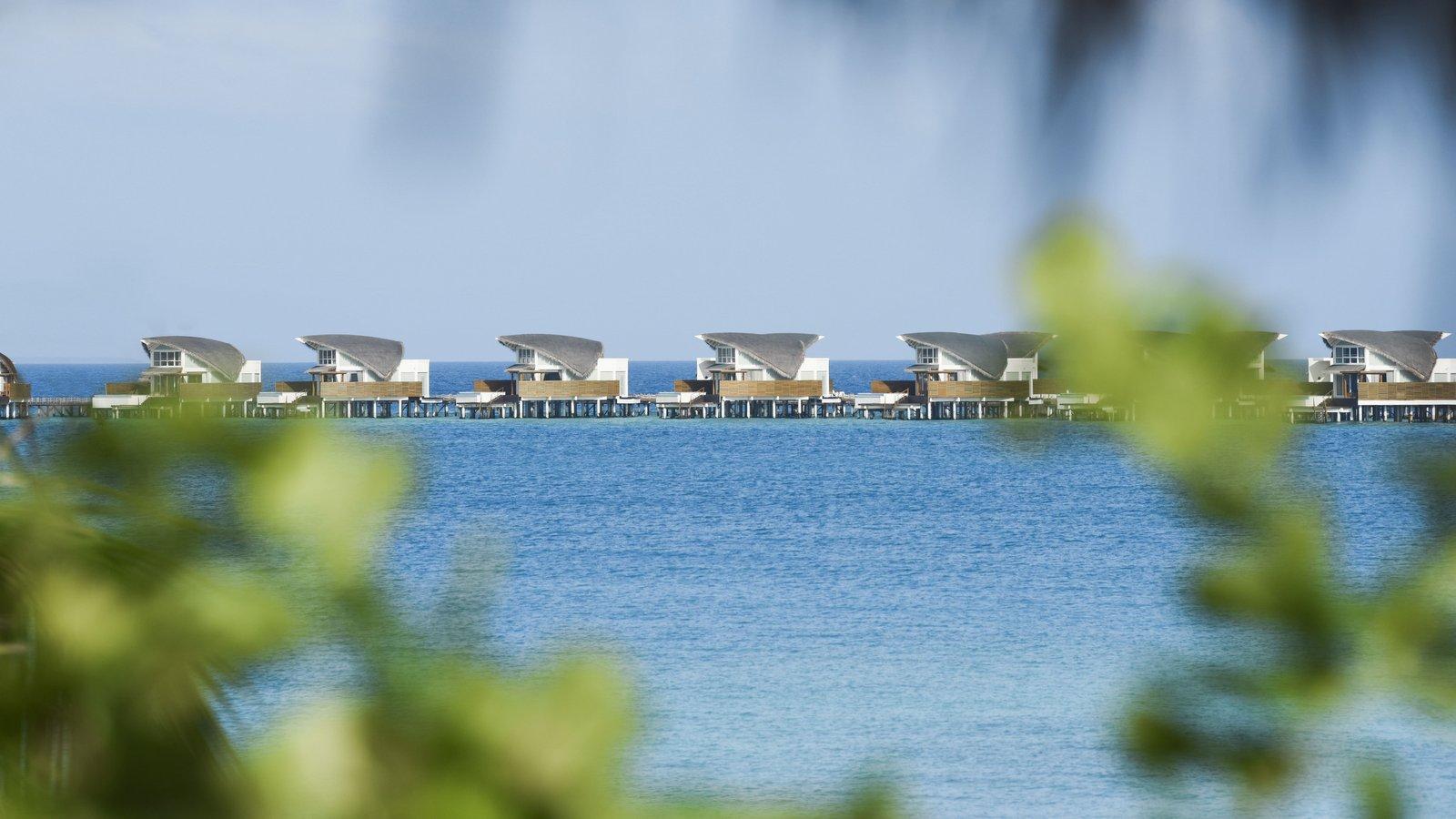 Мальдивы, отель JW Marriott Maldives Resort