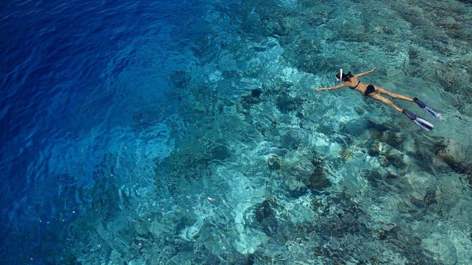 Мальдивы, отель Dusit Thani Maldives, домашний риф