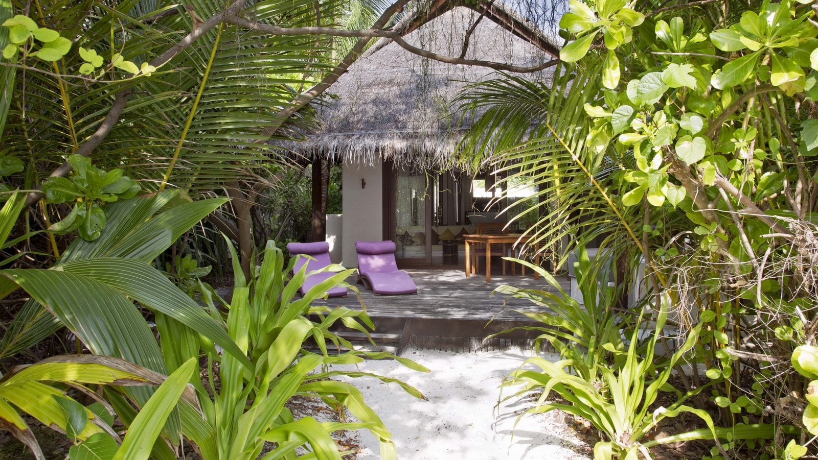 Мальдивы, отель Coco Palm Bodu Hithi, номер Island Villa with Pool