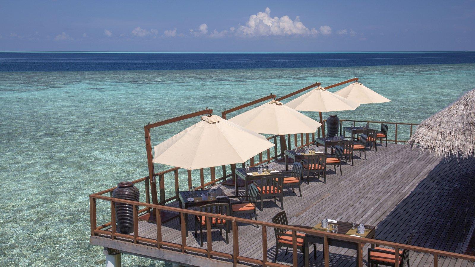 Мальдивы, отель Coco Palm Bodu Hithi, ресторан STARS
