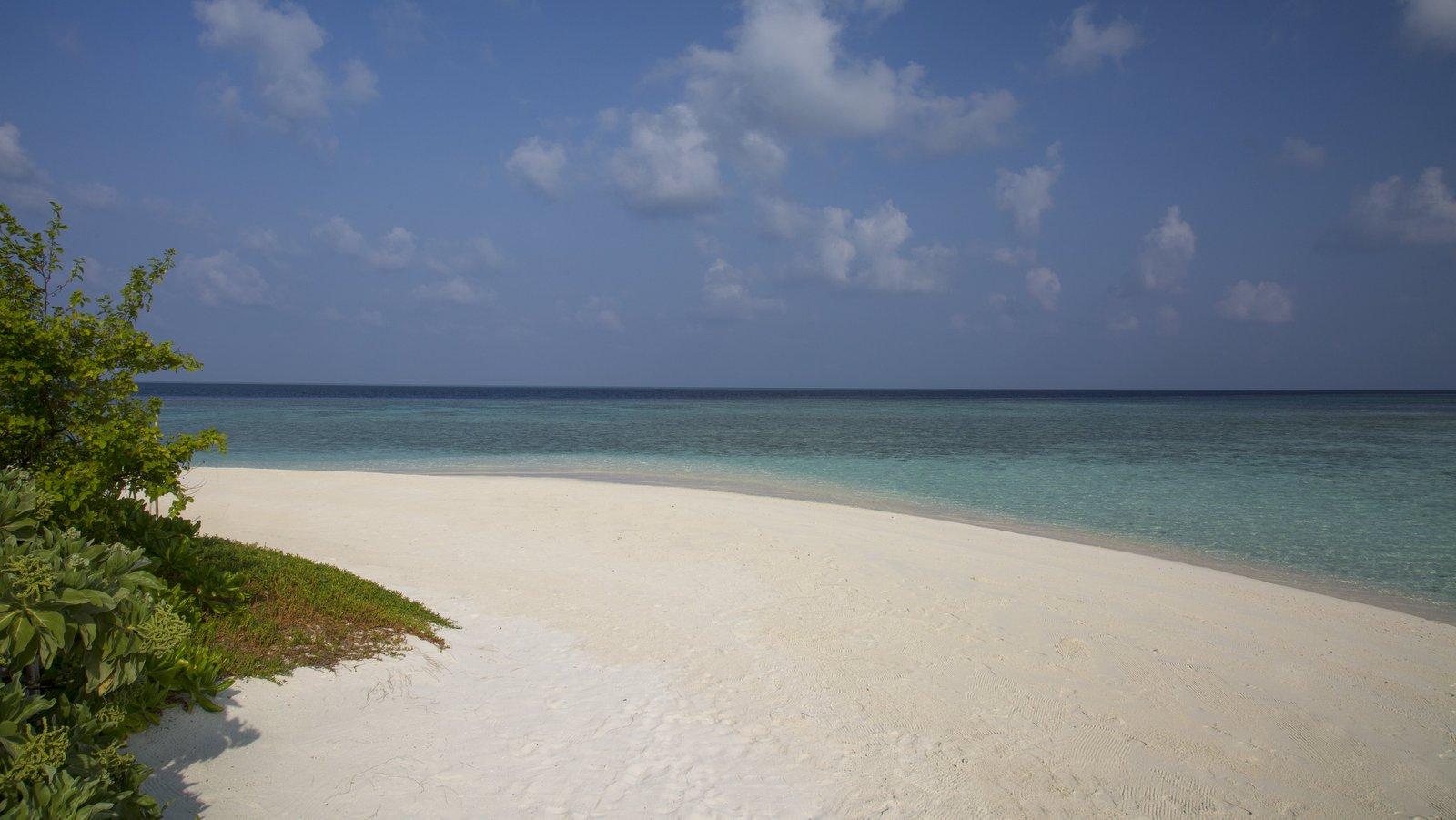 Мальдивы, отель Coco Palm Bodu Hithi, пляж