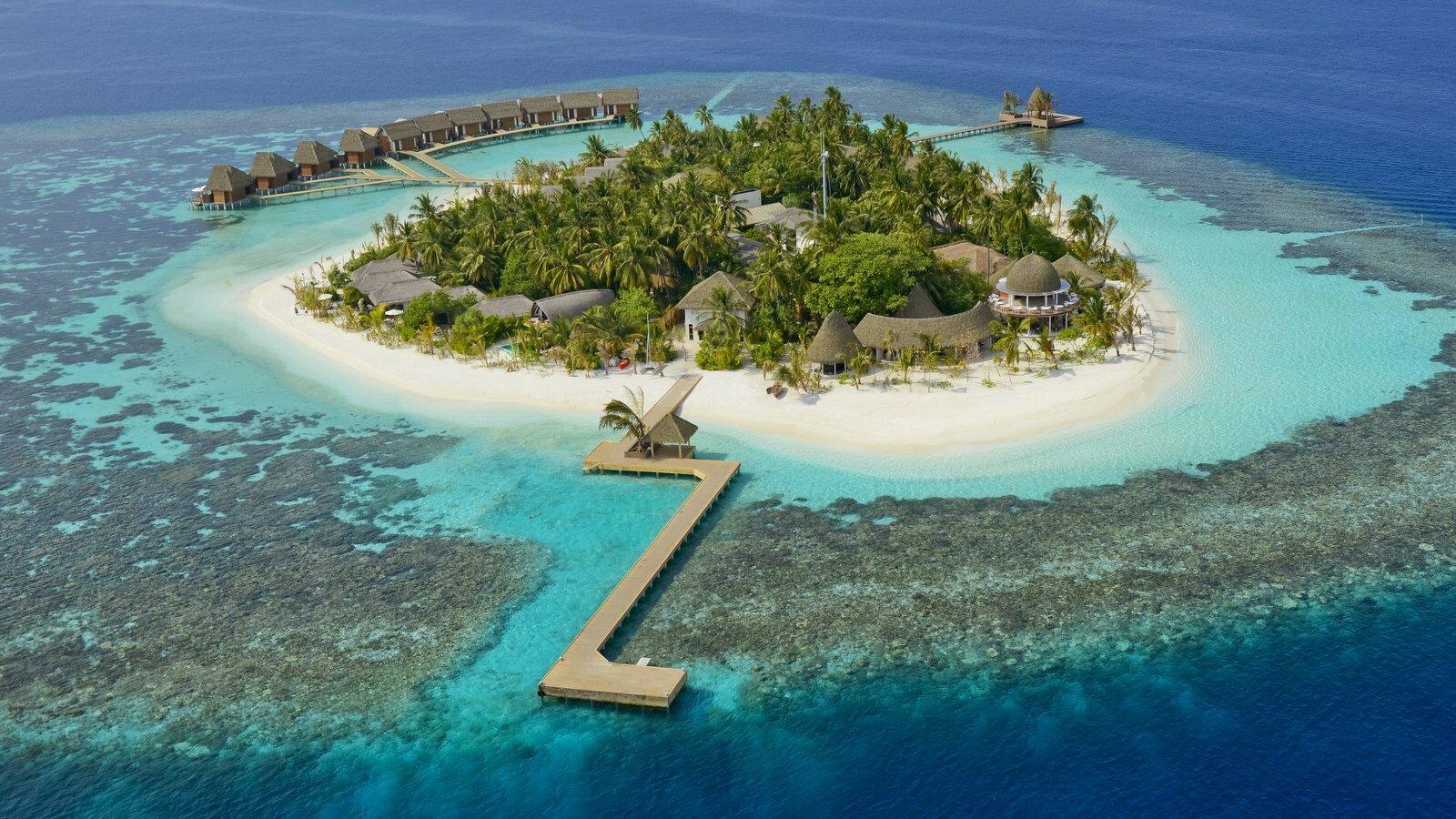 Мальдивы, отель Kandolhu Maldives, домашний риф