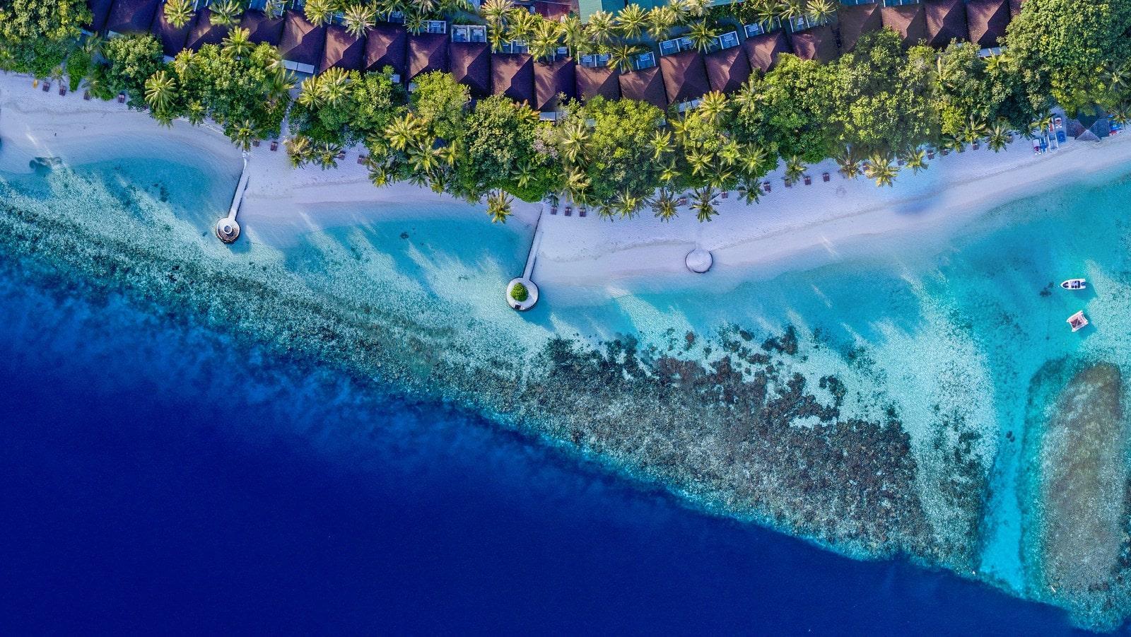 Мальдивы, отель Lily Beach Resort, домашний риф