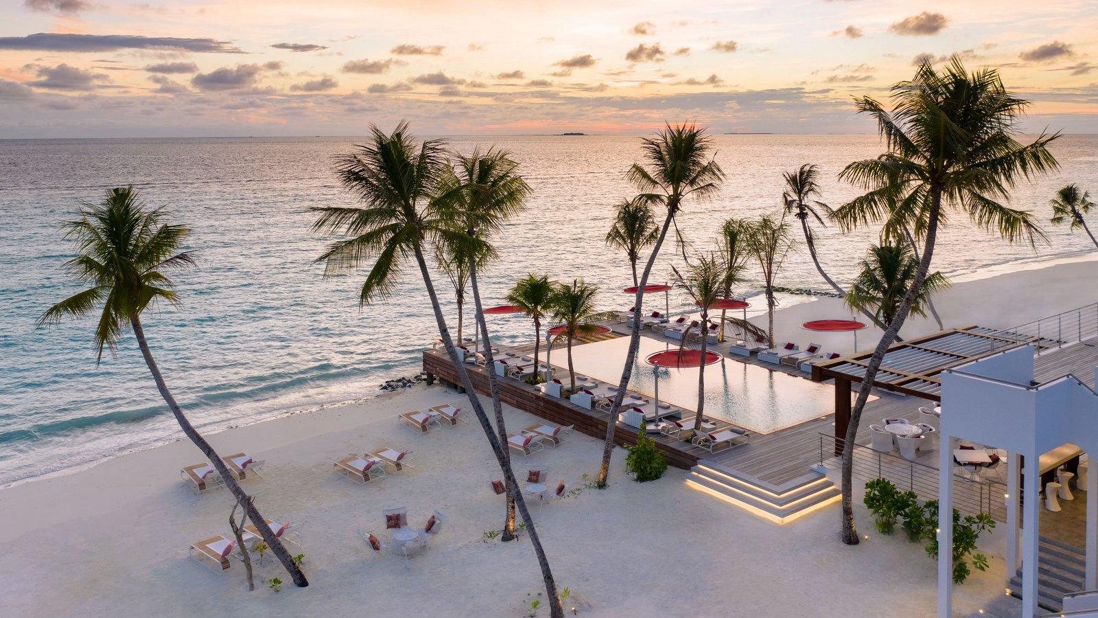 Мальдивы, отель LUX North Male Atoll, ресторан Beach Rouge