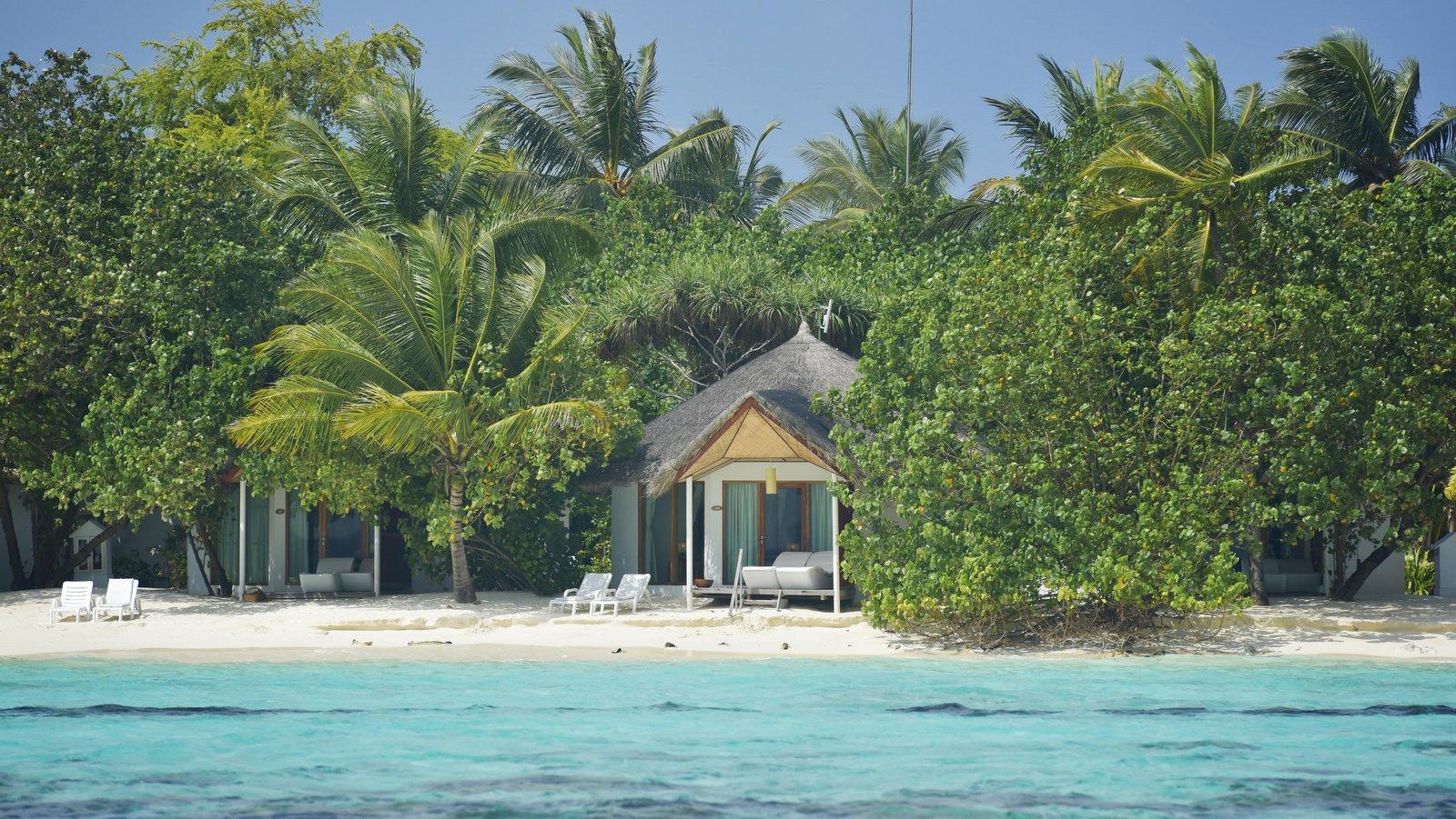 Мальдивы, Отель Safari Island Resort & Spa, номер Beach Bungalow