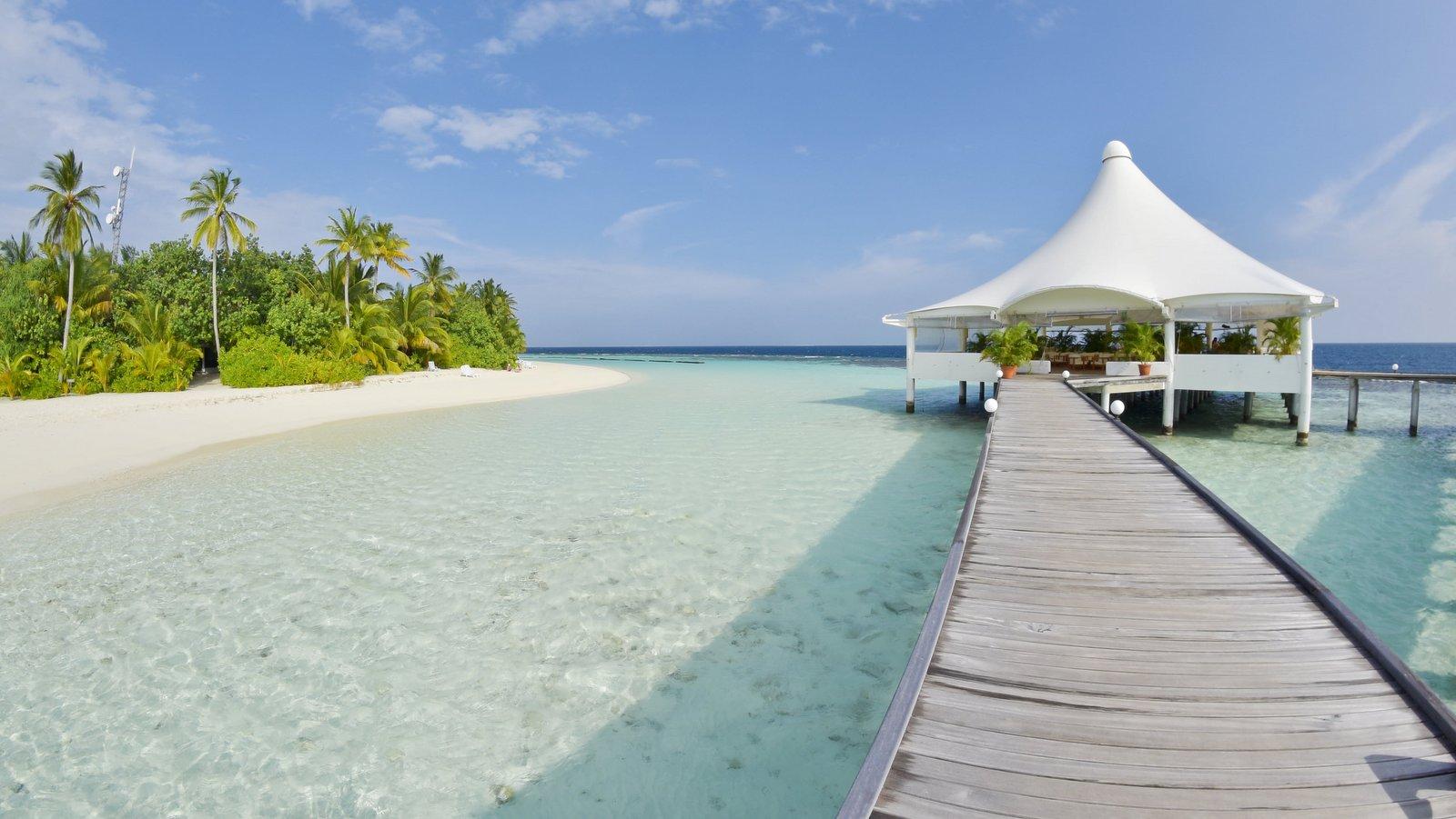 Мальдивы, отель Safari Island Resort & Spa, основной бар